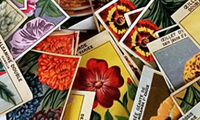 Gardenalia Market – Salvaging Spring